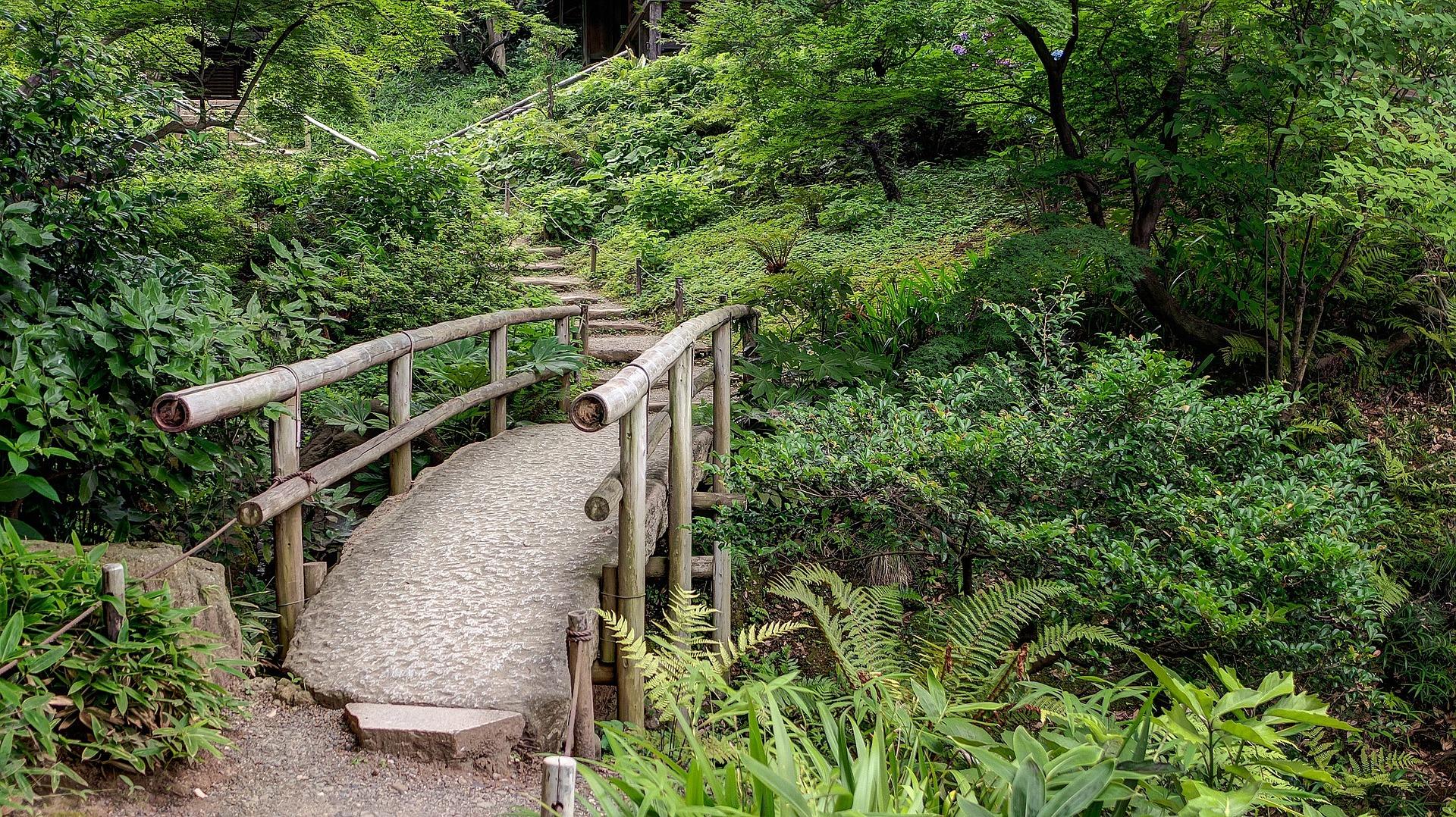 sankeien-gardens-1088419_1920